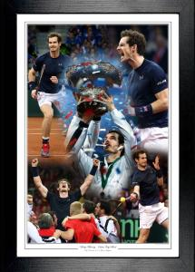 Andy Murray - Davis Cup Final