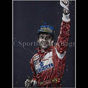 Insituto Ayrton Senna 20th Commemorative Portrait