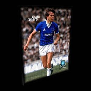 Graeme Sharp Everton Retro Box Canvas - Unsigned